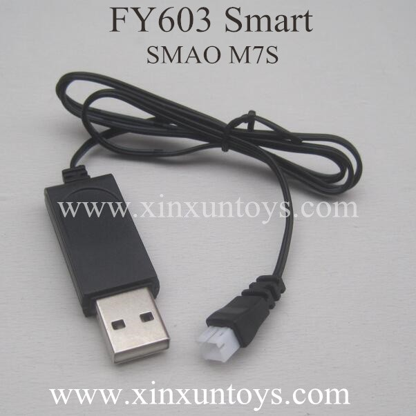 FAYEE FY603 SMART USB Charger